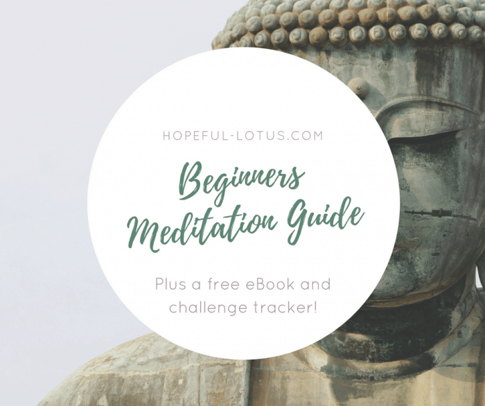 "The Ultimate Meditation Guide for Beginners | I'm sure by now you've heard about the benefits of meditation and are keen to get your own meditation practice going. But you don't know where to start, right? That's why I've created a beginners meditation guide full of beginners meditation tips and meditation quotes to help get you started. I promise that you won't be searching ""how to silence your mind"" after reading my free eBook because this really is meditation made easy!"